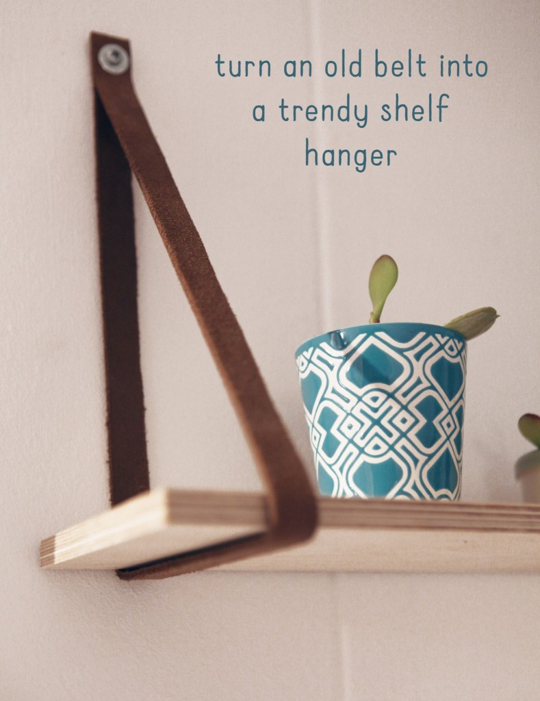 shelf scandinavian succulent